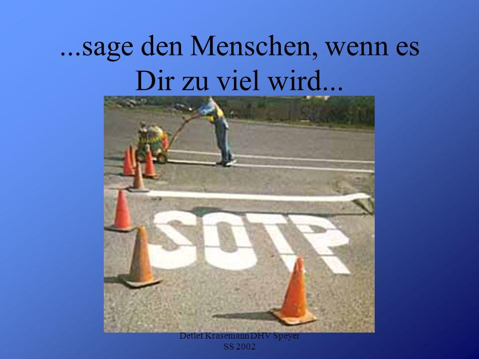 Detlef Krasemann DHV Speyer SS 2002...sage den Menschen, wenn es Dir zu viel wird...