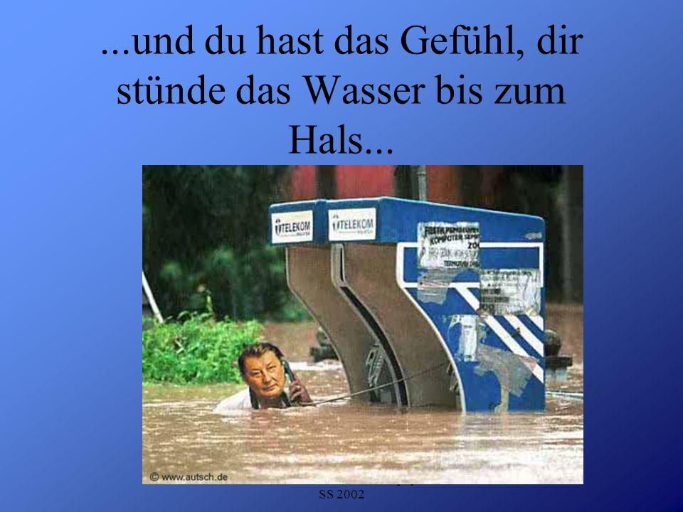 Detlef Krasemann DHV Speyer SS 2002...mache etwas Sport...