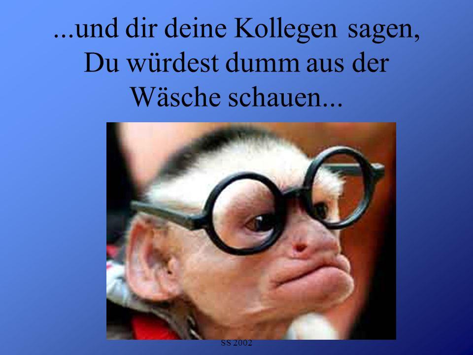 Detlef Krasemann DHV Speyer SS 2002...und dir deine Kollegen sagen, Du würdest dumm aus der Wäsche schauen...