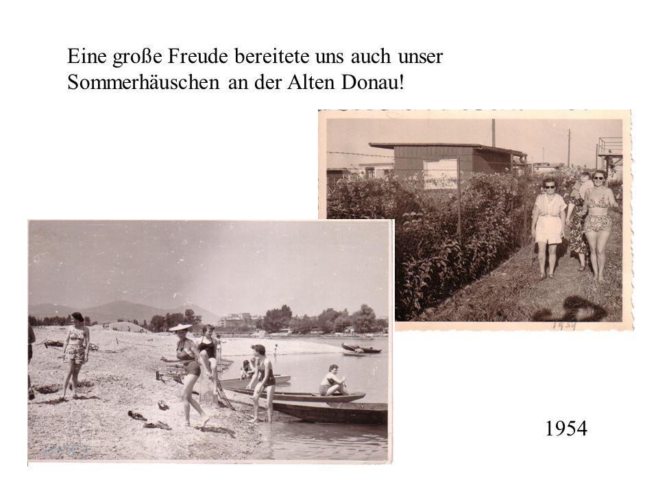Eine große Freude bereitete uns auch unser Sommerhäuschen an der Alten Donau! 1954