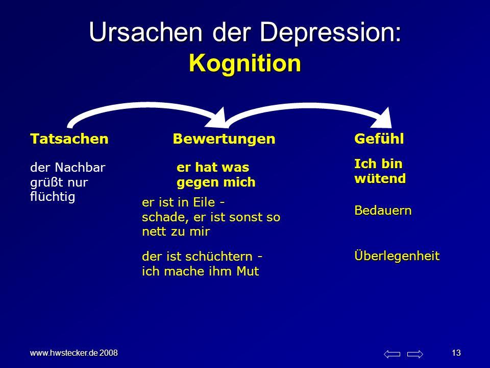 www.hwstecker.de 2008 13 Ursachen der Depression: Kognition TatsachenBewertungenGefühl der Nachbar grüßt nur flüchtig er hat was gegen mich Ich bin wü