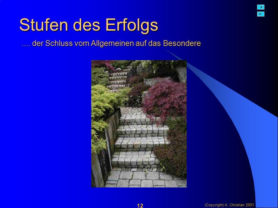 (Copyright) A. Christian 2001 12 Stufen des Erfolgs....