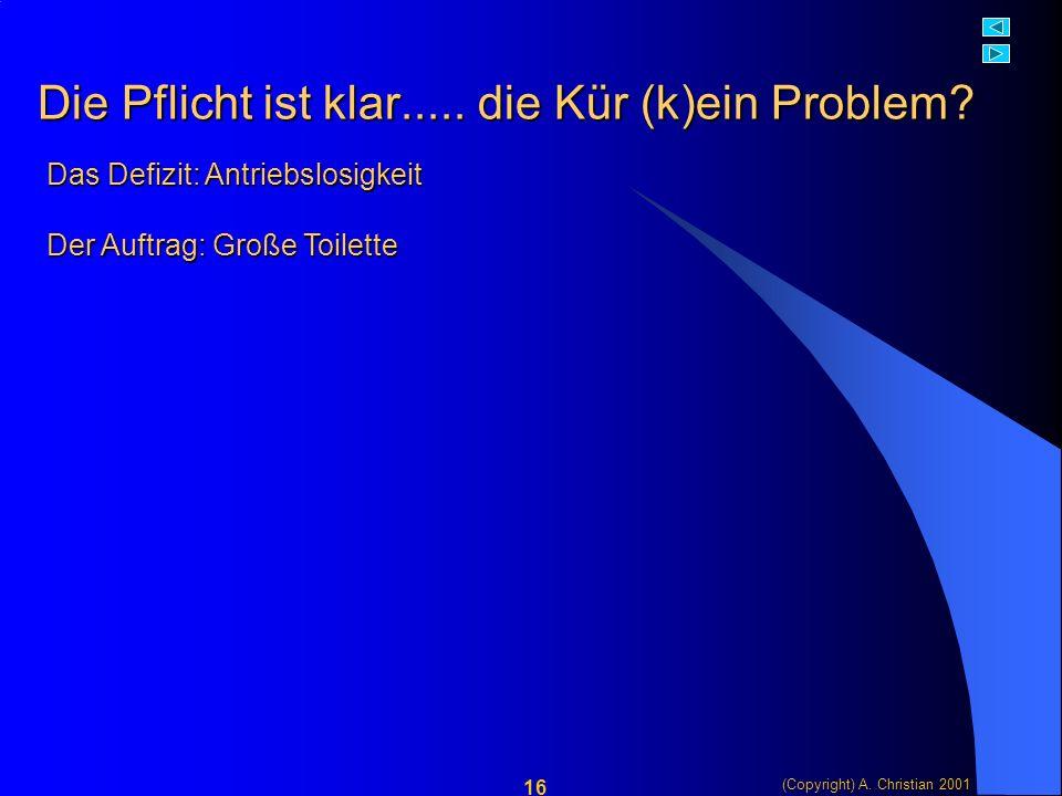 (Copyright) A. Christian 2001 16 Die Pflicht ist klar.....