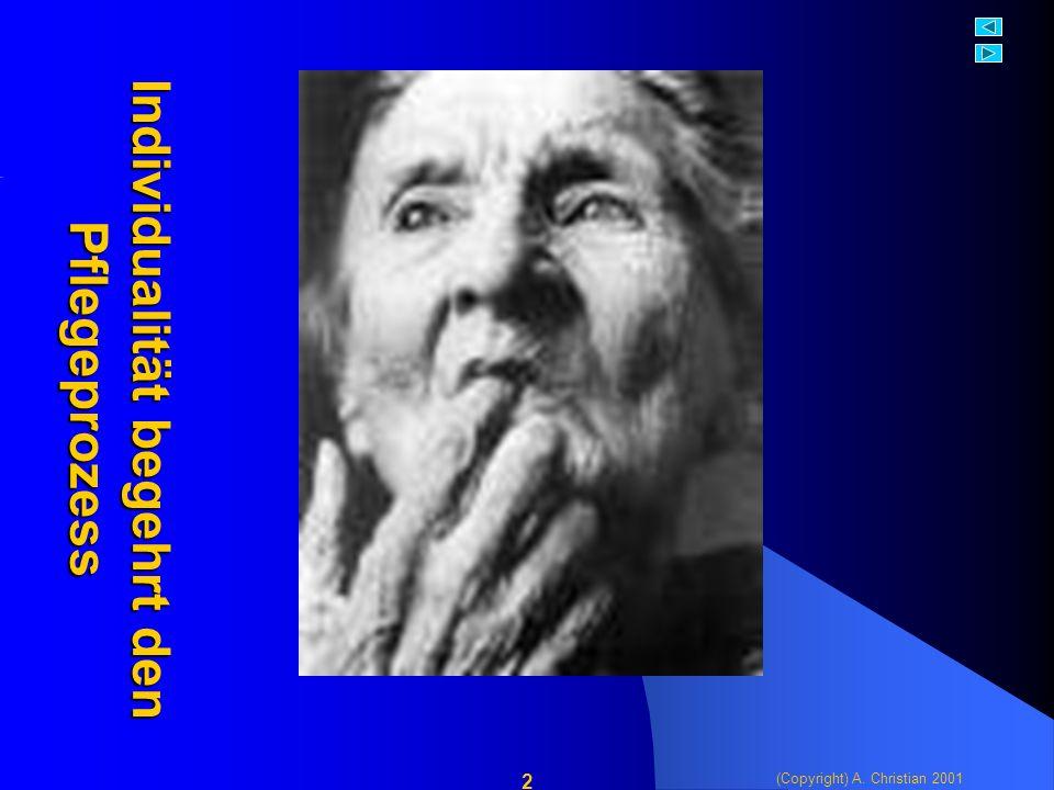 (Copyright) A. Christian 2001 2 Individualität begehrt den Pflegeprozess