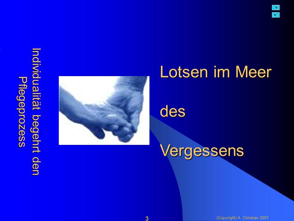 (Copyright) A. Christian 2001 14 Und was haben die Dementen davon?....ein Paradigmawechsel