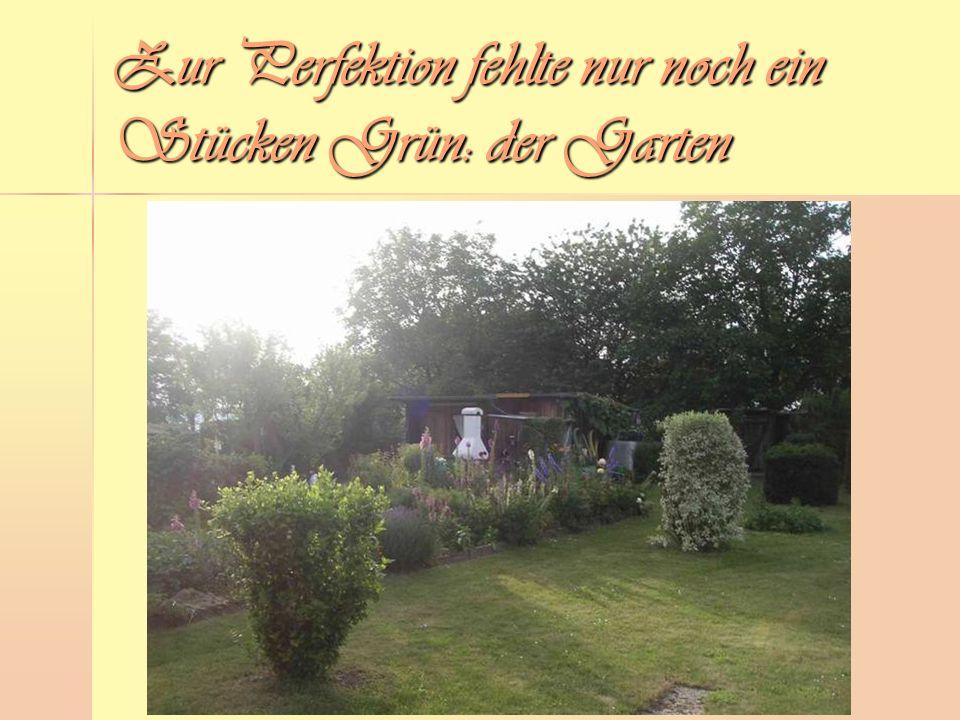 Zur Perfektion fehlte nur noch ein Stücken Grün: der Garten