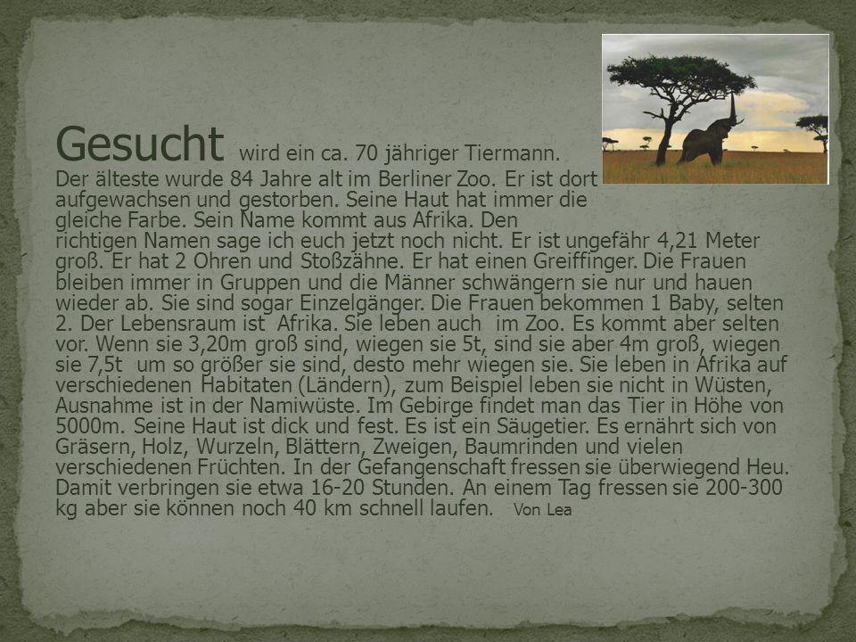 Gesucht wird ein ca. 70 jähriger Tiermann. Der älteste wurde 84 Jahre alt im Berliner Zoo. Er ist dort aufgewachsen und gestorben. Seine Haut hat imme