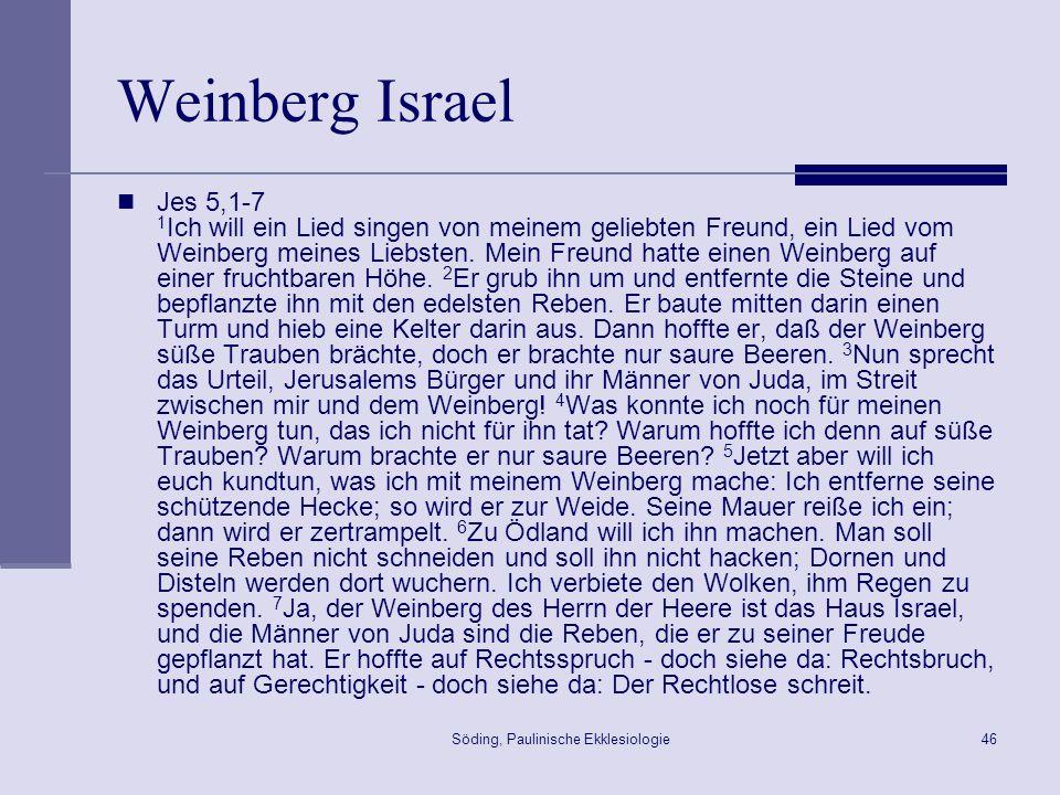 Söding, Paulinische Ekklesiologie47 Weinberg Israel Ps 80,9-16 9 Du hobst in Ägypten einen Weinstock aus, du hast Völker vertrieben, ihn aber eingepflanzt.