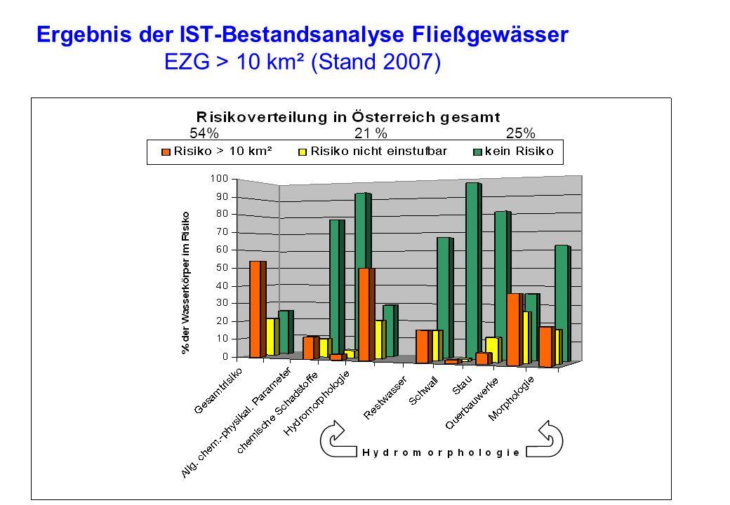 Ergebnis der IST-Bestandsanalyse Fließgewässer EZG > 10 km² (Stand 2007) 54% 21 % 25%