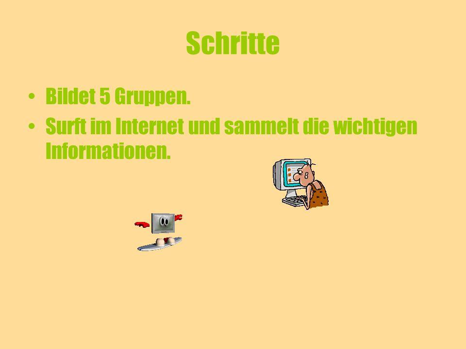 Schritte Bildet 5 Gruppen. Surft im Internet und sammelt die wichtigen Informationen.