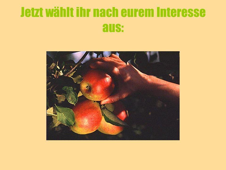 Aufgabe 1 Der Apfel in der gesunden Ernährung Äpfel sind gesund, ideale Vitaminspender … Ein altes Sprichwort besagt, dass man keinen Arzt braucht, wenn man jeden Tag einen Apfel isst.