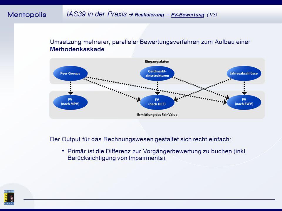 Mengengerüst (Kennzahlen im Kontext Fair Value): IAS39 in der Praxis Realisierung – FV-Bewertung (2/3) Mindestens 4 Jahresabschlüsse je Finanzinstrument.