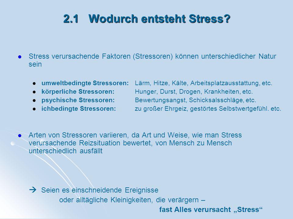 2.1 Wodurch entsteht Stress? Stress verursachende Faktoren (Stressoren) können unterschiedlicher Natur sein umweltbedingte Stressoren: Lärm, Hitze, Kä