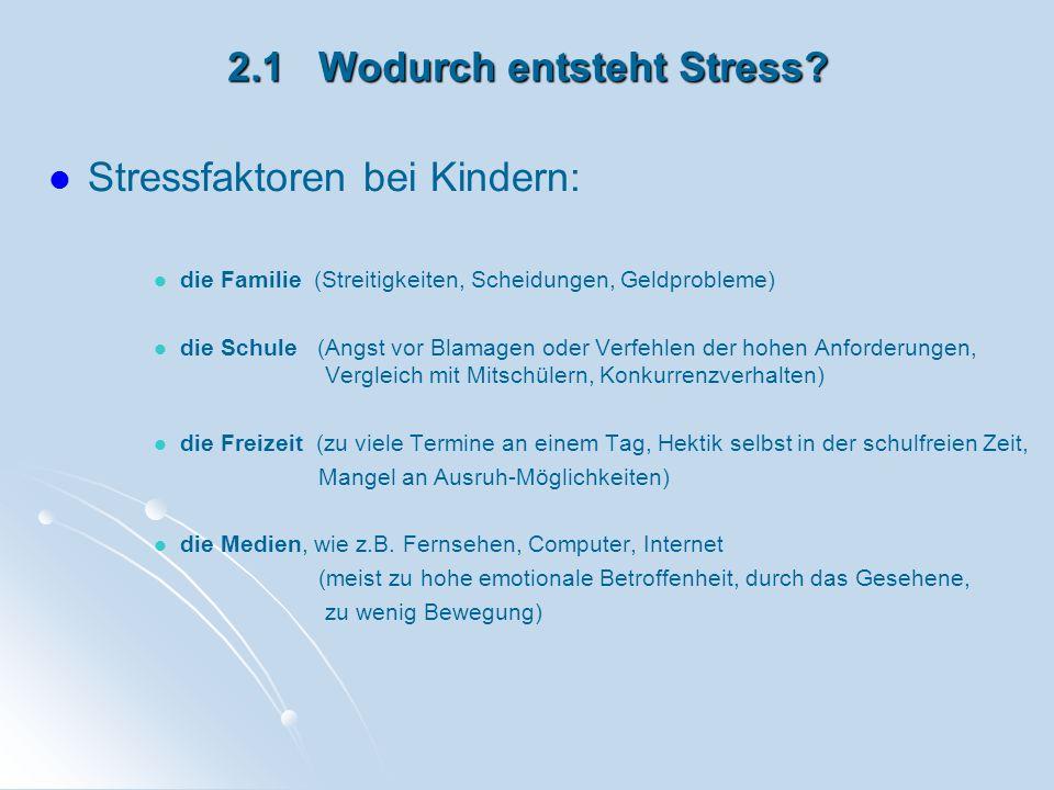 2.1 Wodurch entsteht Stress? Stressfaktoren bei Kindern: die Familie (Streitigkeiten, Scheidungen, Geldprobleme) die Schule (Angst vor Blamagen oder V