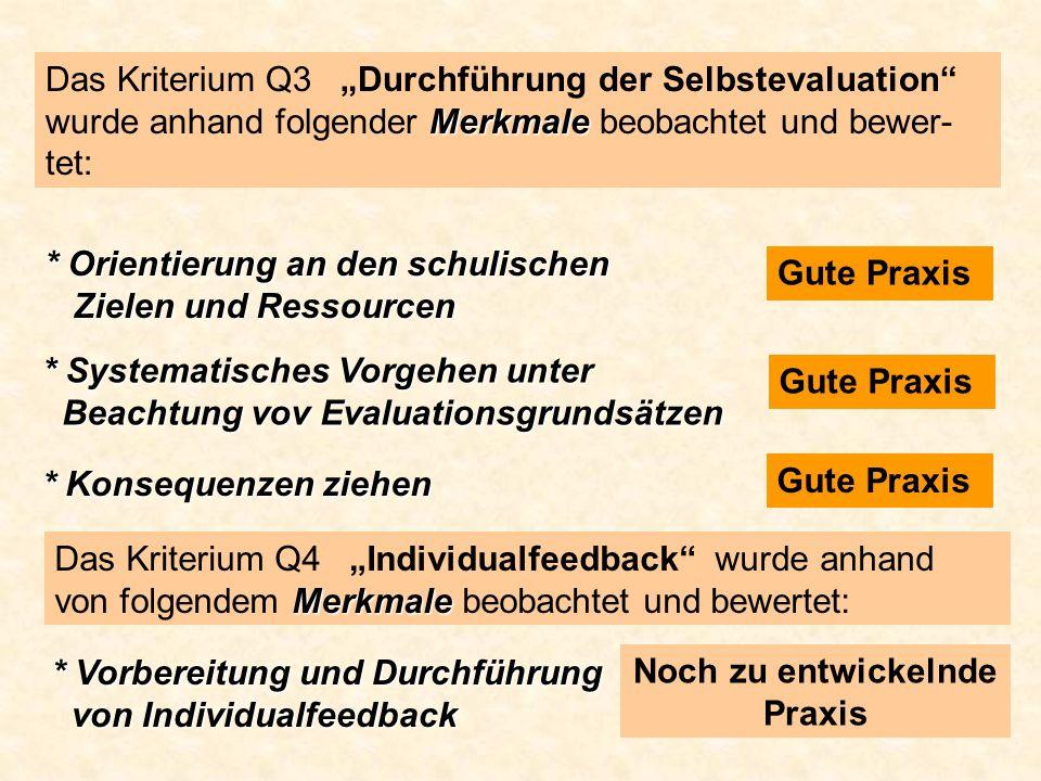 Merkmale Das Kriterium Q3 Durchführung der Selbstevaluation wurde anhand folgender Merkmale beobachtet und bewer- tet: * Orientierung an den schulisch