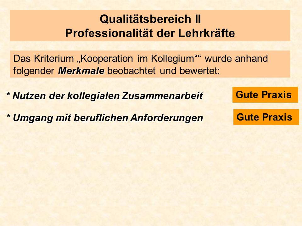 Qualitätsbereich II Professionalität der Lehrkräfte Merkmale Das Kriterium Kooperation im Kollegium wurde anhand folgender Merkmale beobachtet und bew
