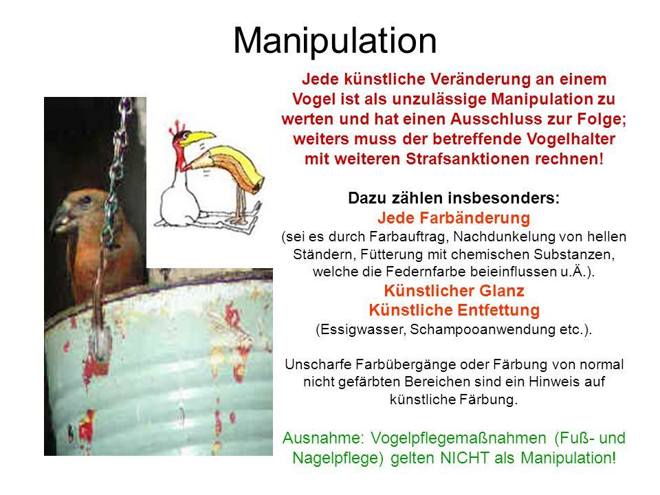 Manipulation Jede künstliche Veränderung an einem Vogel ist als unzulässige Manipulation zu werten und hat einen Ausschluss zur Folge; weiters muss de
