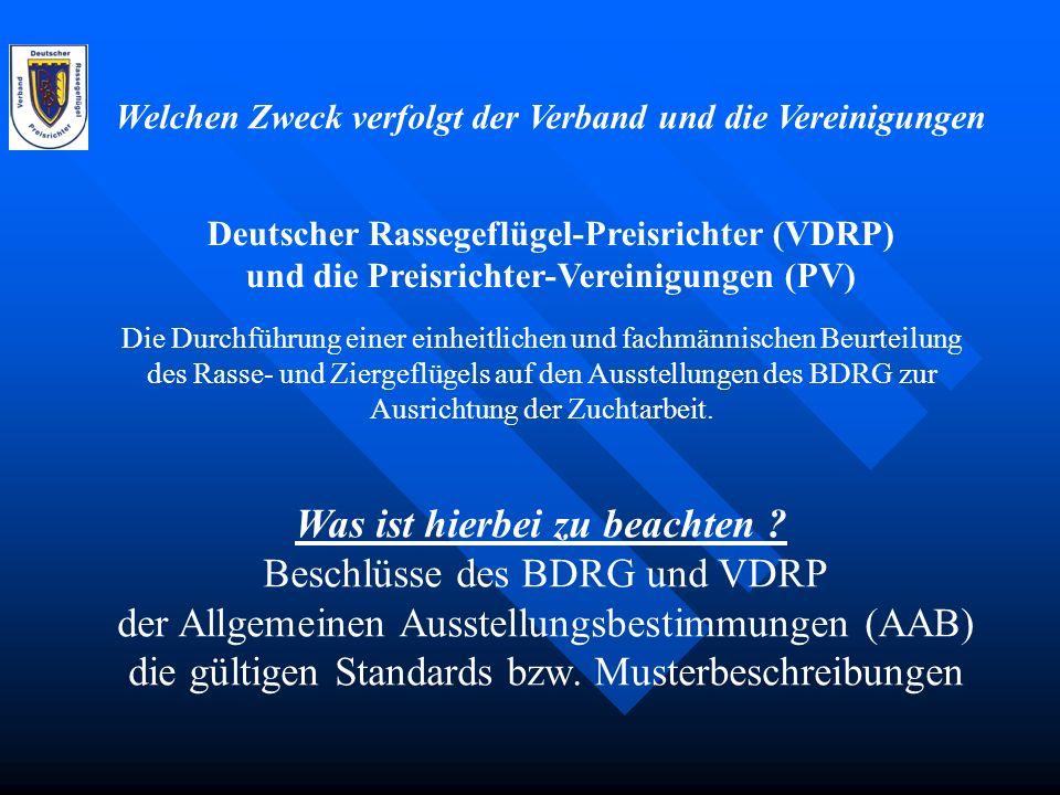 PR + SR – Bernd Kippenhan Bei der Beurteilung von Geflügel auf der Südd.