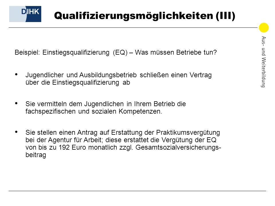 Qualifizierungsmöglichkeiten (III) Beispiel: Einstiegsqualifizierung (EQ) – Was müssen Betriebe tun? Jugendlicher und Ausbildungsbetrieb schließen ein