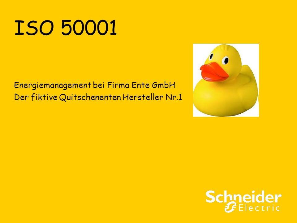 ISO 50001 Energiemanagement bei Firma Ente GmbH Der fiktive Quitschenenten Hersteller Nr.1