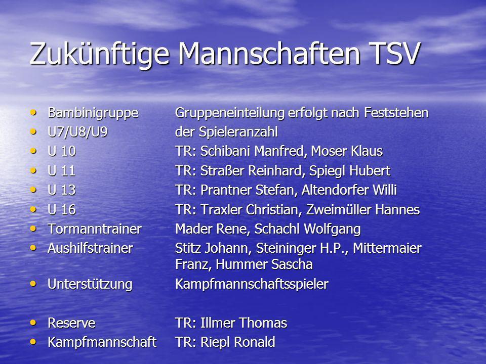 Zukünftige Mannschaften TSV BambinigruppeGruppeneinteilung erfolgt nach Feststehen BambinigruppeGruppeneinteilung erfolgt nach Feststehen U7/U8/U9der