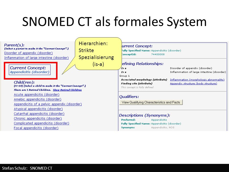 SNOMED CT als formales System Hierarchien: Strikte Spezialisierung (is-a) Stefan Schulz: SNOMED CT