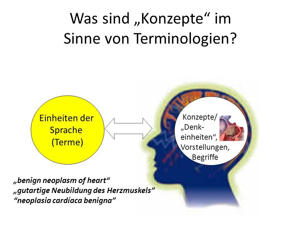 Einheiten der Sprache (Terme) benign neoplasm of heart gutartige Neubildung des Herzmuskels neoplasia cardíaca benigna Konzepte/ Denk- einheiten, Vorstellungen, Begriffe Was sind Konzepte im Sinne von Terminologien?