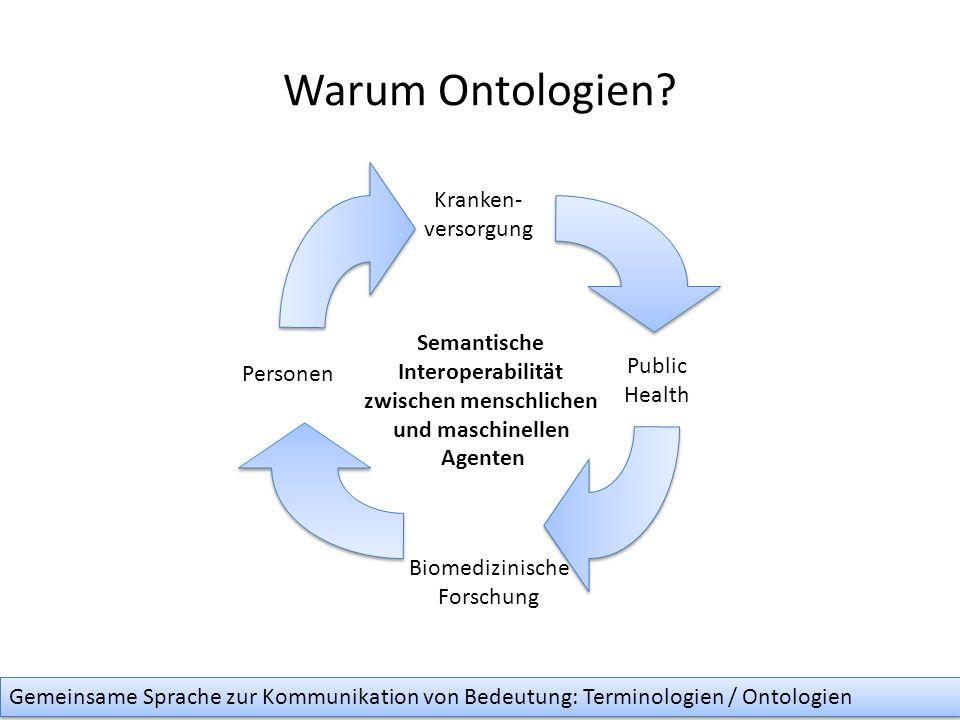 Formale Ontologie Welt Type 1 Hierarchien, Typen, Klassen, Individuen