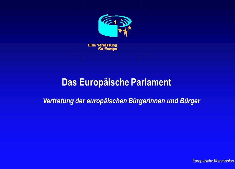Das Europäische Parlament Vertretung der europäischen Bürgerinnen und Bürger Europäische Kommission