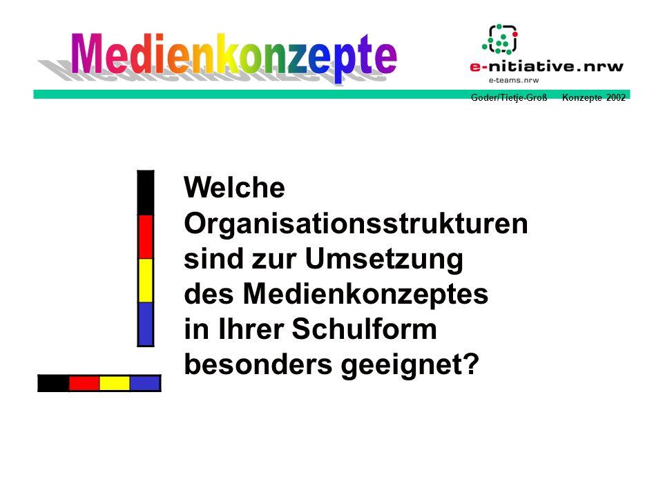 Goder/Tietje-Groß Konzepte 2002 Welche Organisationsstrukturen sind zur Umsetzung des Medienkonzeptes in Ihrer Schulform besonders geeignet?