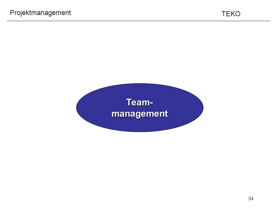 54 Projektmanagement TEKO Team-management