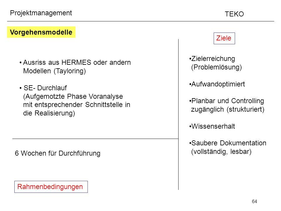 64 Projektmanagement TEKO Ziele Rahmenbedingungen Zielerreichung (Problemlösung) Aufwandoptimiert Planbar und Controlling zugänglich (strukturiert) Wi
