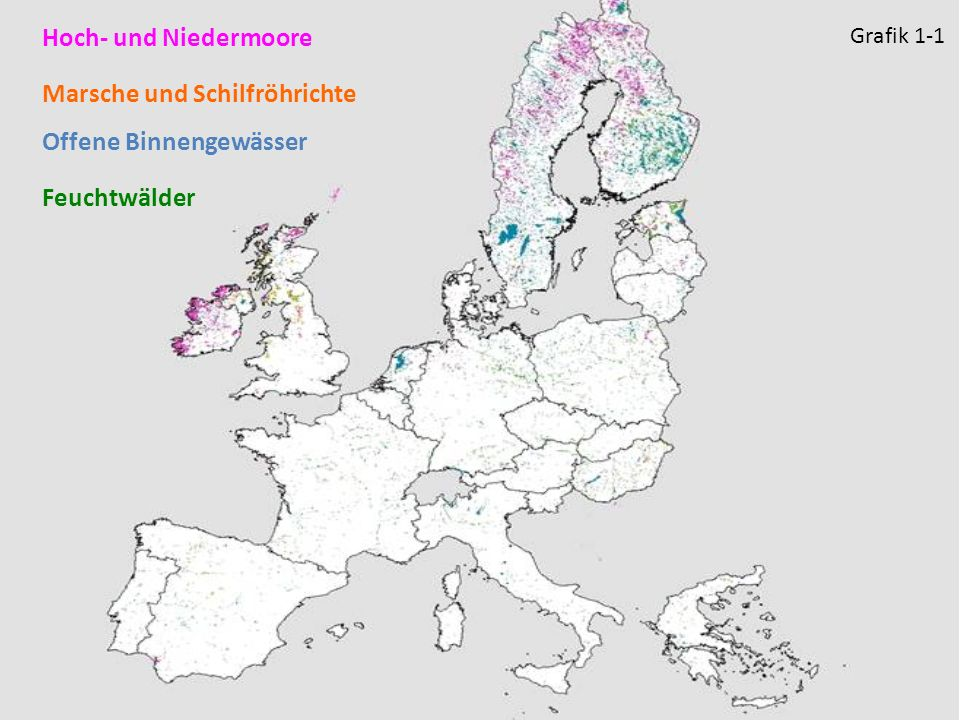 Hoch- und Niedermoore Feuchtwälder Marsche und Schilfröhrichte Offene Binnengewässer Grafik 1-1