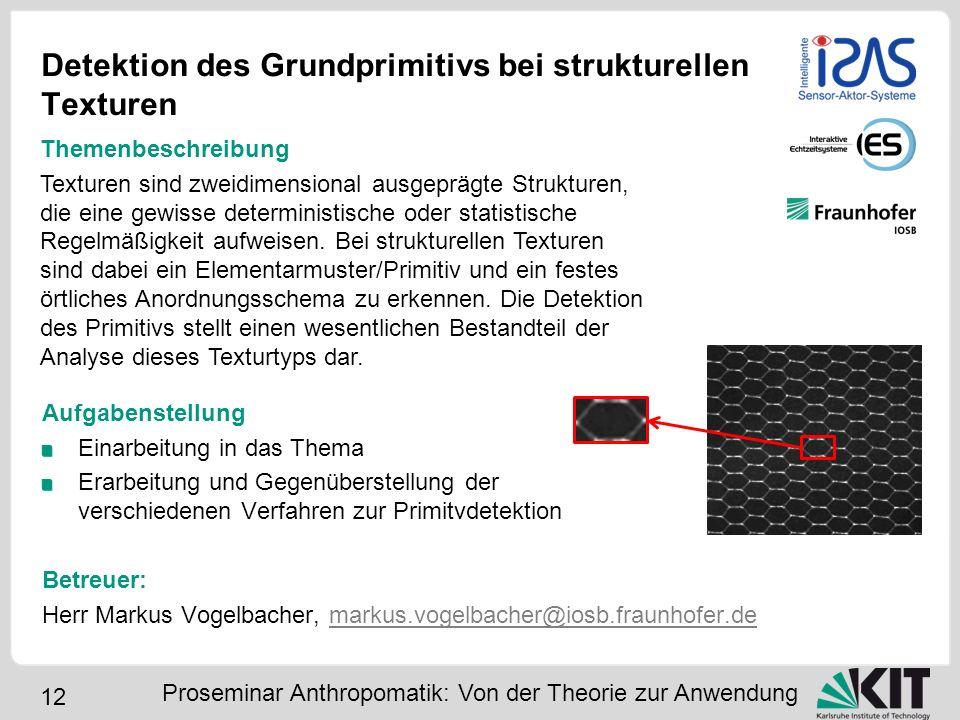 12 Detektion des Grundprimitivs bei strukturellen Texturen Aufgabenstellung Einarbeitung in das Thema Erarbeitung und Gegenüberstellung der verschiede