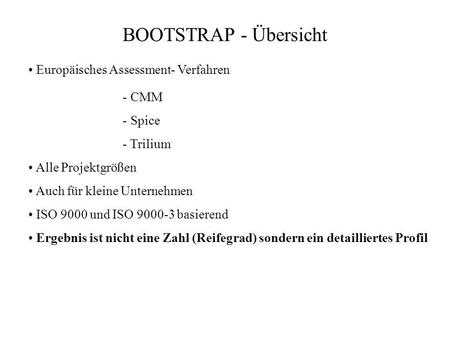 BOOTSTRAP - Übersicht Europäisches Assessment- Verfahren Alle Projektgrößen Auch für kleine Unternehmen ISO 9000 und ISO 9000-3 basierend Ergebnis ist