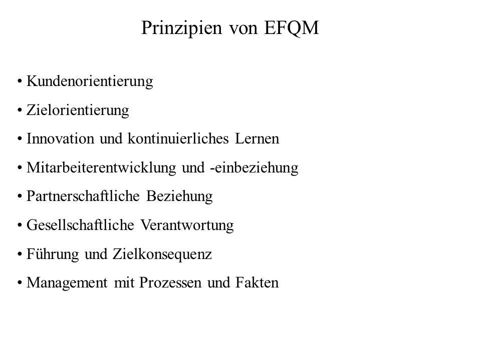 Prinzipien von EFQM Kundenorientierung Zielorientierung Innovation und kontinuierliches Lernen Mitarbeiterentwicklung und -einbeziehung Partnerschaftl