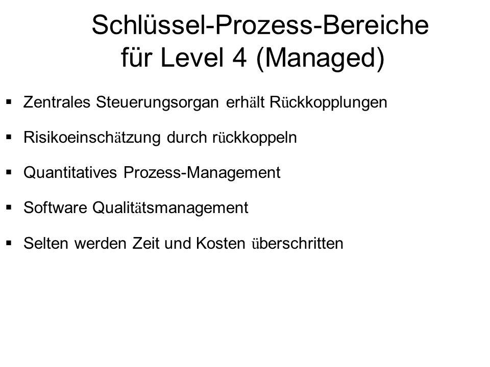 Schlüssel-Prozess-Bereiche für Level 4 (Managed) Zentrales Steuerungsorgan erh ä lt R ü ckkopplungen Risikoeinsch ä tzung durch r ü ckkoppeln Quantita