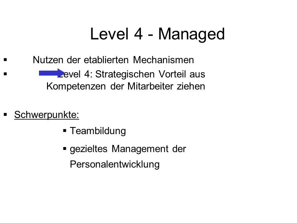 Level 4 - Managed Nutzen der etablierten Mechanismen Level 4: Strategischen Vorteil aus Kompetenzen der Mitarbeiter ziehen Schwerpunkte: Teambildung g