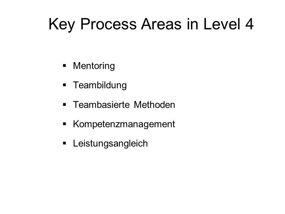Key Process Areas in Level 4 Mentoring Teambildung Teambasierte Methoden Kompetenzmanagement Leistungsangleich