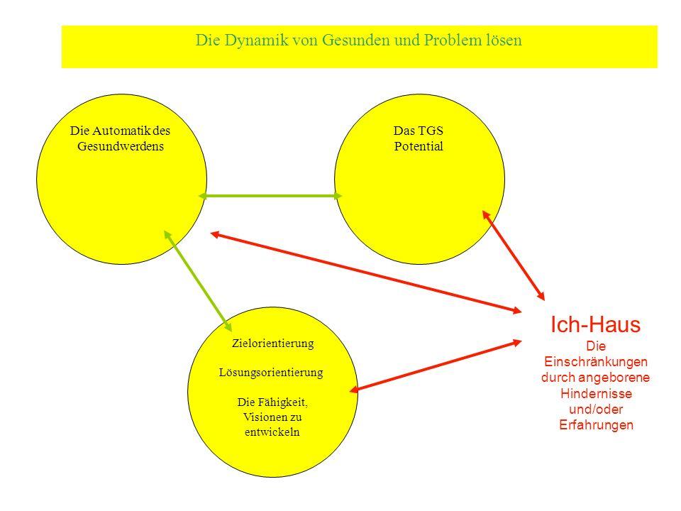 Die Automatik des Gesundwerdens Das TGS Potential Zielorientierung Lösungsorientierung Die Fähigkeit, Visionen zu entwickeln Die Dynamik von Gesunden und Problem lösen Ich-Haus Die Einschränkungen durch angeborene Hindernisse und/oder Erfahrungen