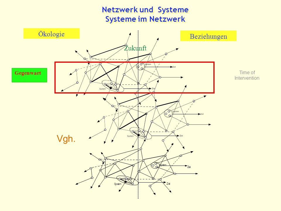 Netzwerk und Systeme Systeme im Netzwerk Zukunft Beziehungen Ökologie Gegenwart Vgh.