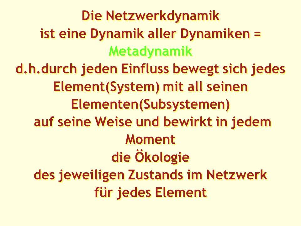 Die Netzwerkdynamik ist eine Dynamik aller Dynamiken = Metadynamik d.h.durch jeden Einfluss bewegt sich jedes Element(System) mit all seinen Elementen(Subsystemen) auf seine Weise und bewirkt in jedem Moment die Ökologie des jeweiligen Zustands im Netzwerk für jedes Element