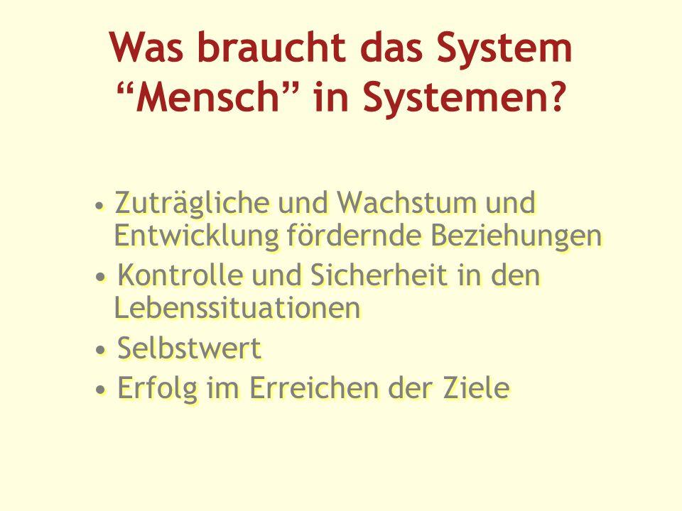 Was braucht das SystemMensch in Systemen.