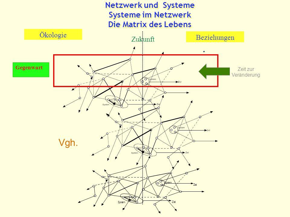 Netzwerk und Systeme Systeme im Netzwerk Die Matrix des Lebens Zukunft Beziehungen Ökologie Gegenwart Vgh.