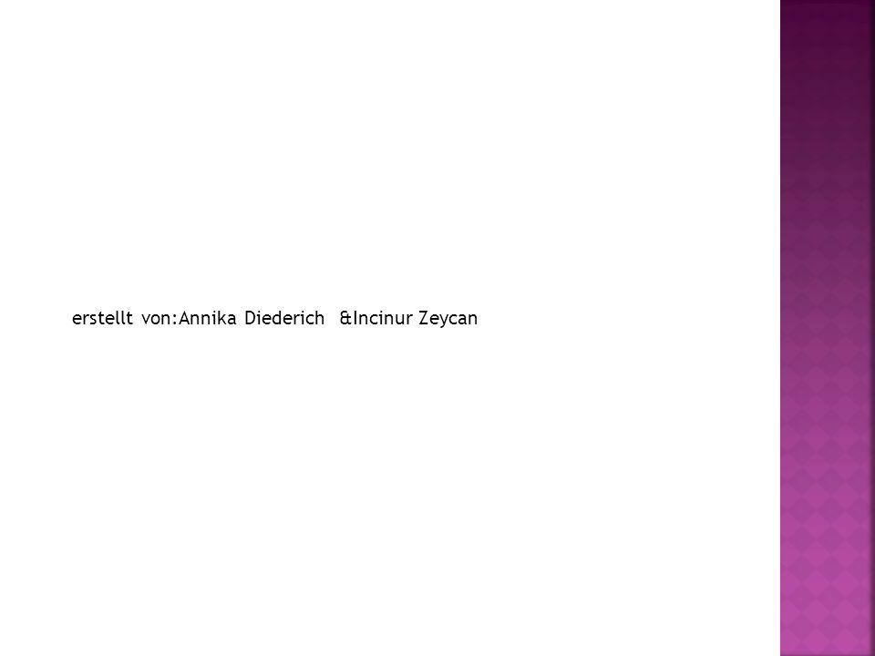 erstellt von:Annika Diederich &Incinur Zeycan