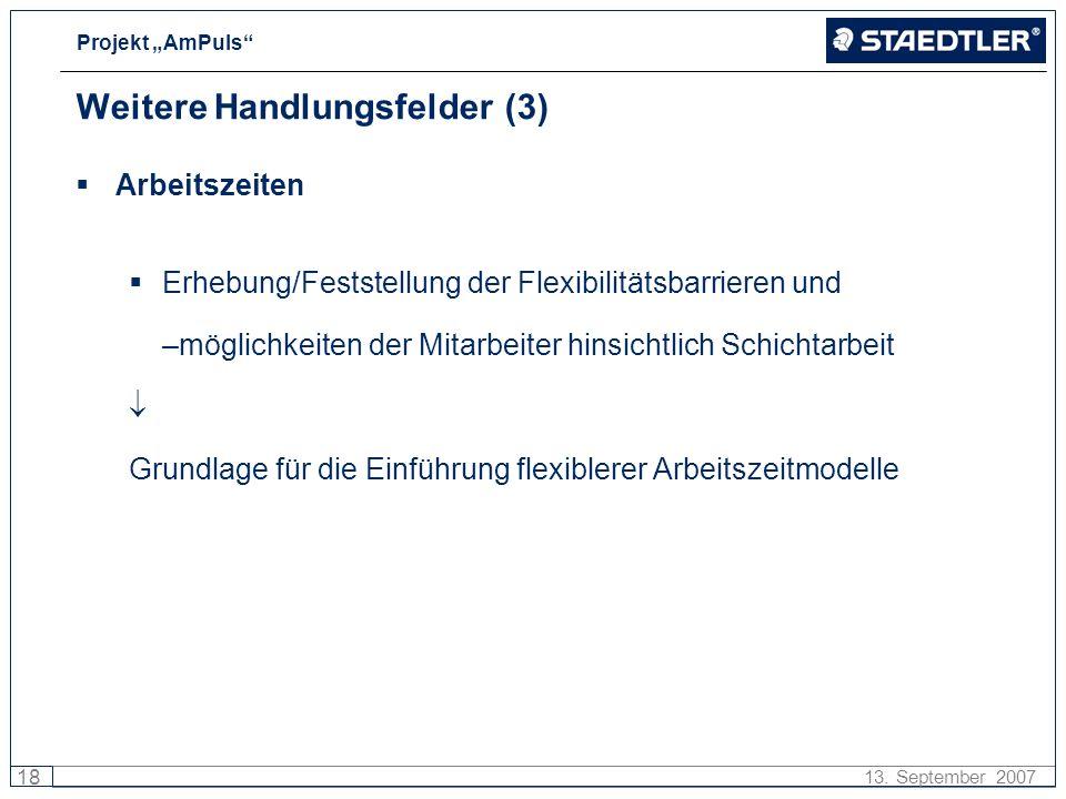 Projekt AmPuls 18 13. September 2007 Weitere Handlungsfelder (3) Arbeitszeiten Erhebung/Feststellung der Flexibilitätsbarrieren und –möglichkeiten der