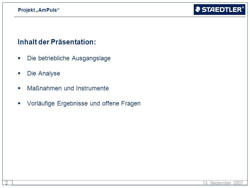 Projekt AmPuls 2 13. September 2007 Inhalt der Präsentation: Die betriebliche Ausgangslage Die Analyse Maßnahmen und Instrumente Vorläufige Ergebnisse