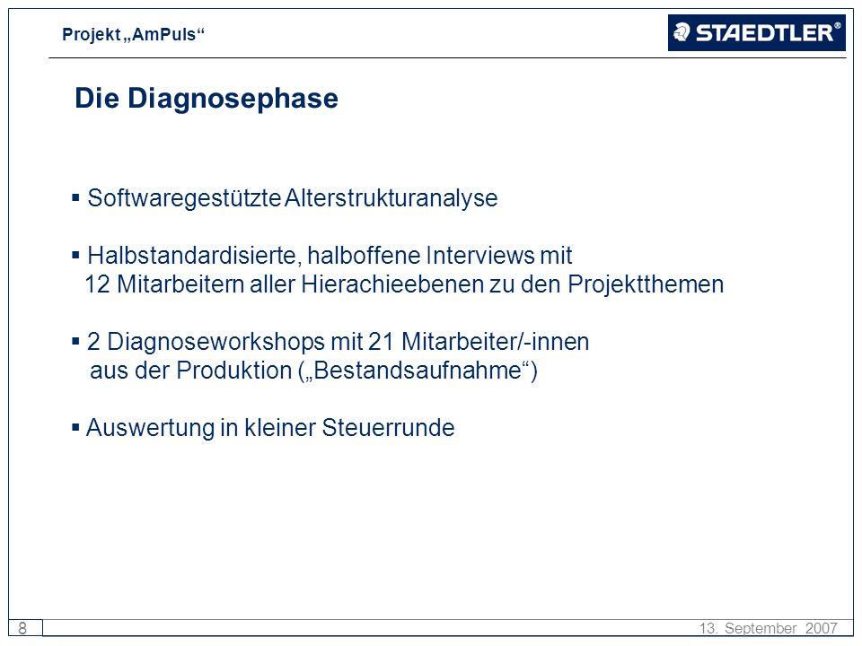 Projekt AmPuls 8 13. September 2007 Die Diagnosephase Softwaregestützte Alterstrukturanalyse Halbstandardisierte, halboffene Interviews mit 12 Mitarbe
