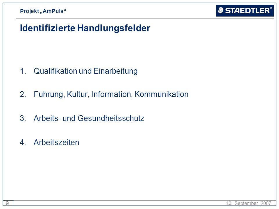Projekt AmPuls 9 13. September 2007 Identifizierte Handlungsfelder 1.Qualifikation und Einarbeitung 2.Führung, Kultur, Information, Kommunikation 3.Ar