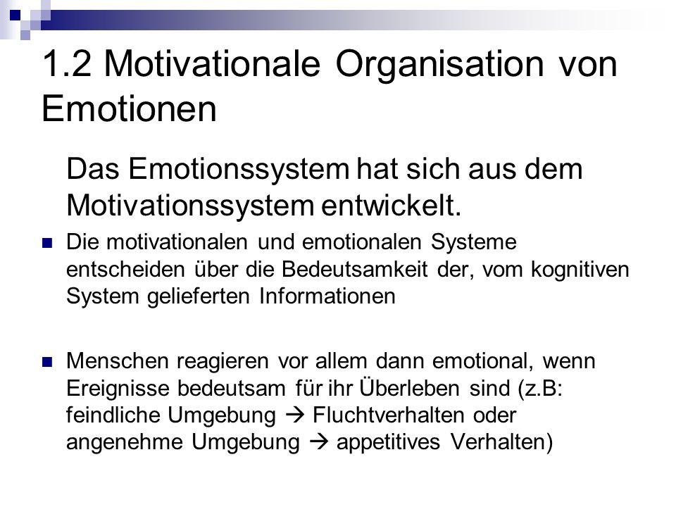 1.2 Motivationale Organisation von Emotionen Das Emotionssystem hat sich aus dem Motivationssystem entwickelt.